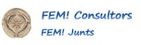logo FEM web
